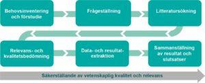 Figur som visar arbetsgången för institutets systematiska översikter