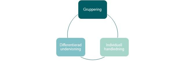 Figurs som visar strategier för vuxenutbildning: gruppering, individuell handledning och differentierad undervisning.