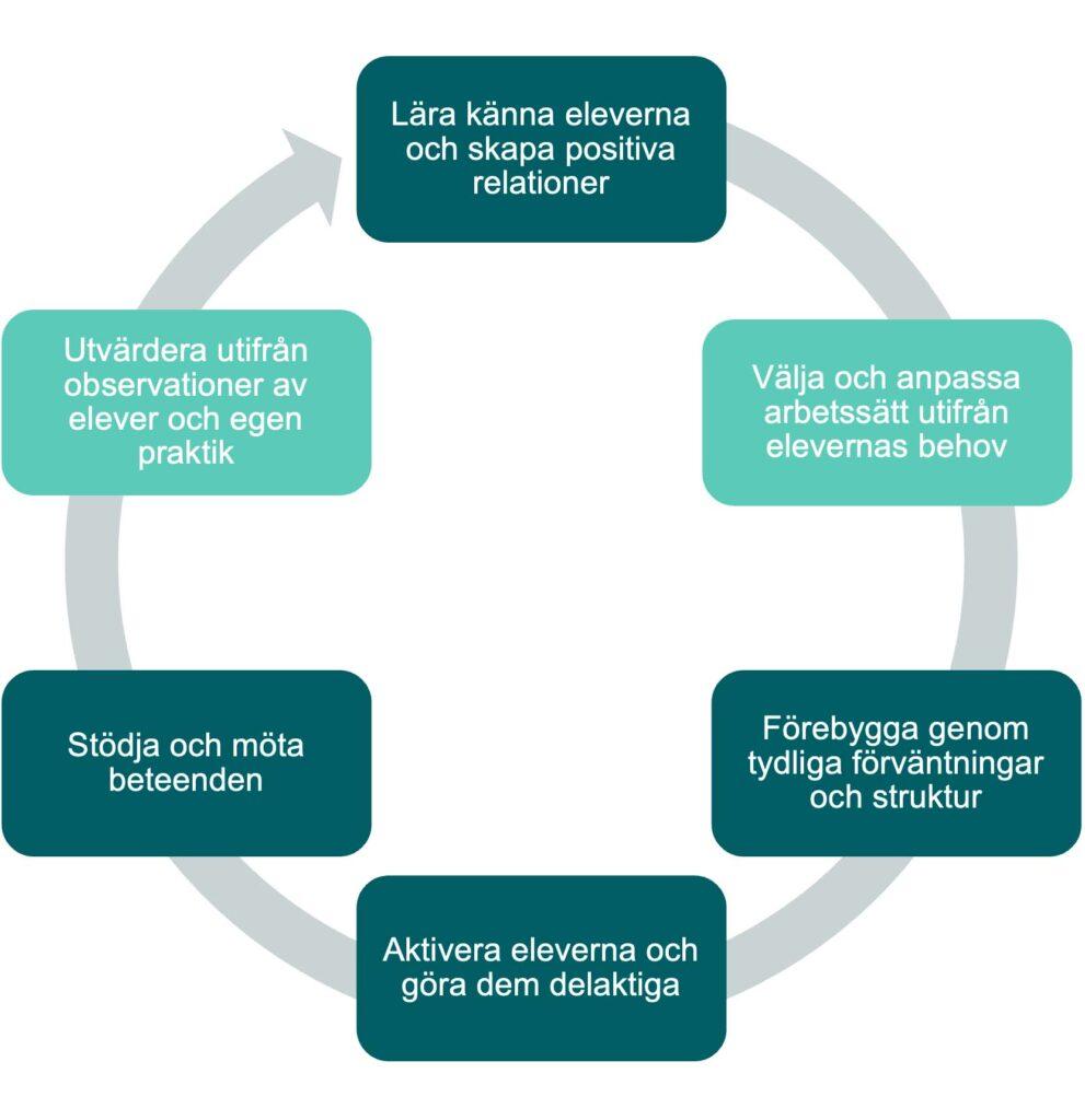 Cyklisk proces: Lära känna eleverna och skapa positiva relationer, Välja och anpassa arbetssätt utifrån elevernas behov, Förebygga genom tydliga förväntningar och struktur, Aktivera eleverna och göra dem delaktiga, Stödja och möta beteenden, Utvärdera utifrån observationer av elever och egen praktik.
